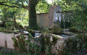 Les fontaines de Saint Savin