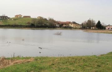 Lac Gris
