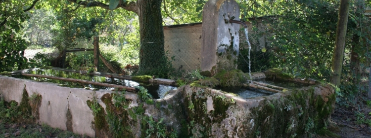 Fontaines de Saint Savin